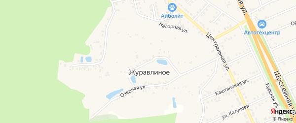 Родниковая улица на карте хутора Журавлиного с номерами домов