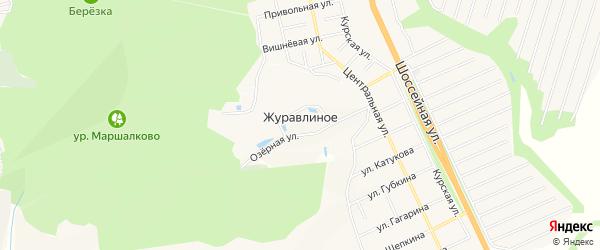 Карта хутора Журавлиного в Белгородской области с улицами и номерами домов
