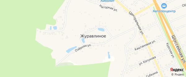 Дубовая улица на карте хутора Журавлиного с номерами домов