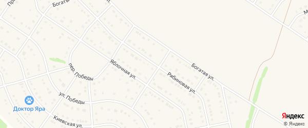 Рябиновая улица на карте Стрелецкого села с номерами домов