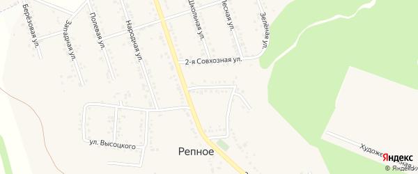 Совхозная 1-я улица на карте Репного села с номерами домов