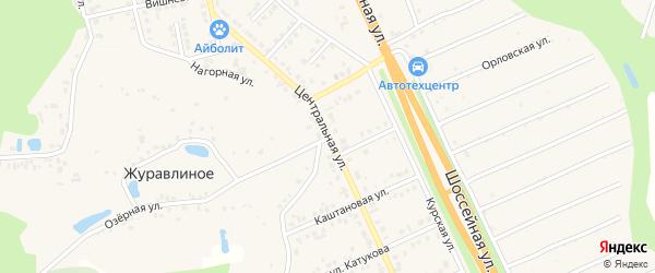 Центральная улица на карте Строителя с номерами домов