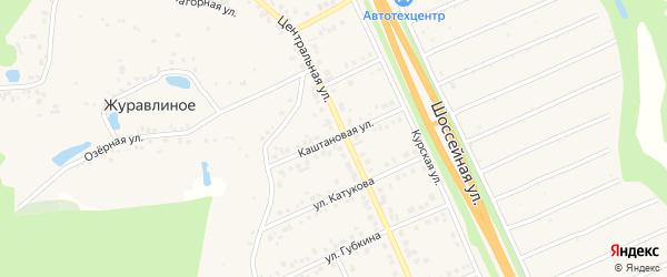 Каштановая улица на карте Строителя с номерами домов