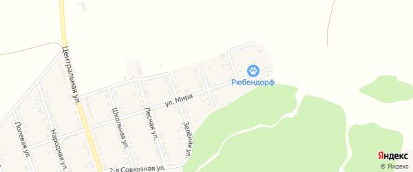 Новый 1-й переулок на карте Репного села с номерами домов