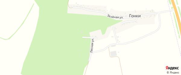 Колхозная улица на карте хутора Гонок с номерами домов