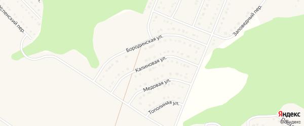 Калиновая улица на карте Стрелецкого села с номерами домов