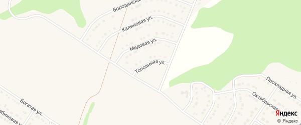 Тополиная улица на карте Стрелецкого села с номерами домов