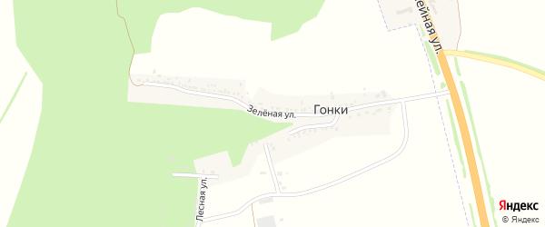 Зеленая улица на карте хутора Гонок с номерами домов
