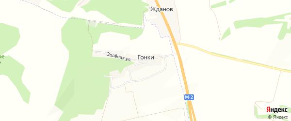 Карта хутора Гонок в Белгородской области с улицами и номерами домов