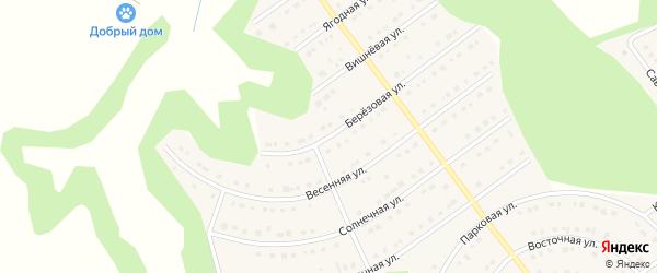 Березовая улица на карте села Новой Нелидовки с номерами домов