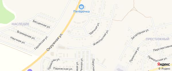 Удачная улица на карте Репного села с номерами домов