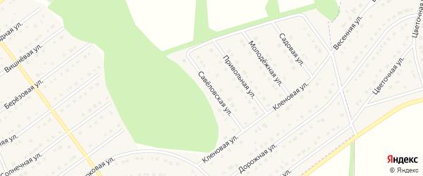 Савеловская улица на карте села Новой Нелидовки с номерами домов