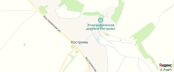 Карта села Костромы в Белгородской области с улицами и номерами домов