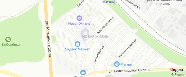 Каштановая улица на карте Белгорода с номерами домов