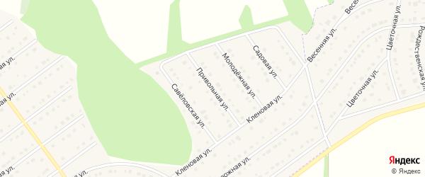 Привольная улица на карте села Новой Нелидовки с номерами домов