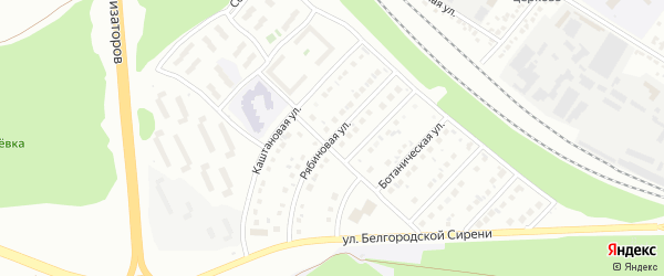 Рябиновая улица на карте Белгорода с номерами домов