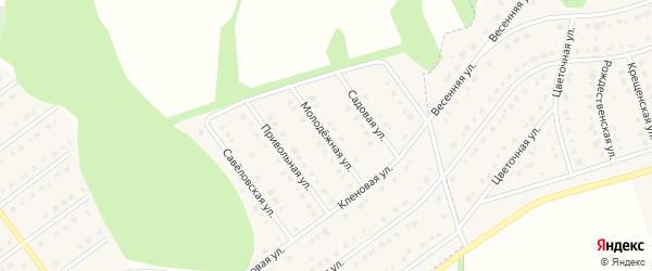 Молодежная улица на карте села Новой Нелидовки с номерами домов