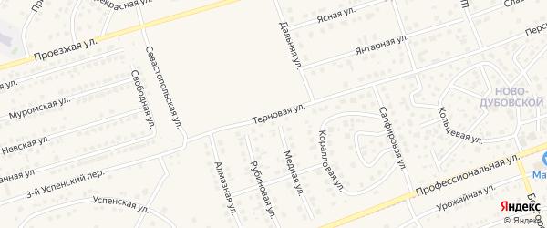 Терновая улица на карте поселка Дубового с номерами домов