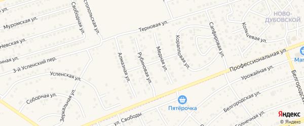 Рябиновая улица на карте поселка Дубового с номерами домов