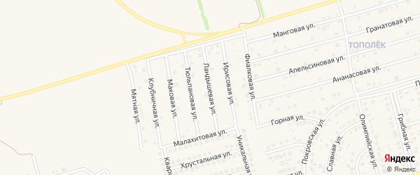 Ландышевая улица на карте поселка Дубового с номерами домов