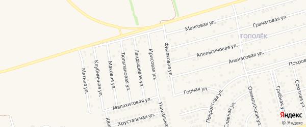 Ирисовая улица на карте поселка Дубового с номерами домов