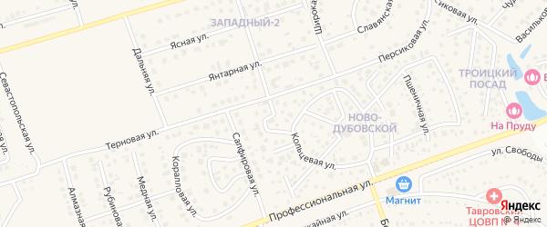 Жасминовая улица на карте поселка Дубового с номерами домов