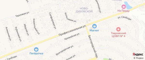 Профессиональная улица на карте поселка Дубового с номерами домов