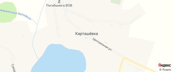 Лесная улица на карте села Карташевки с номерами домов