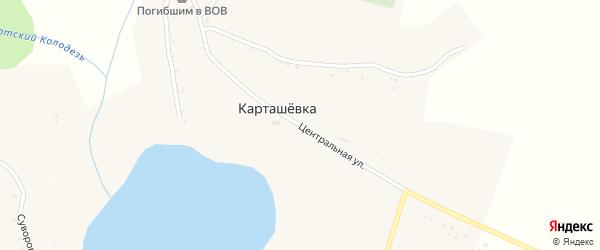 Центральная улица на карте села Карташевки с номерами домов