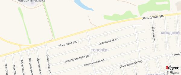 Манговая улица на карте поселка Дубового с номерами домов
