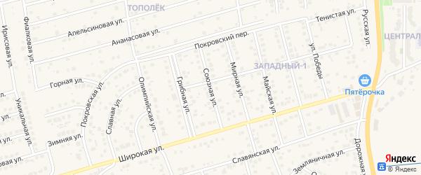 Союзная улица на карте поселка Дубового с номерами домов