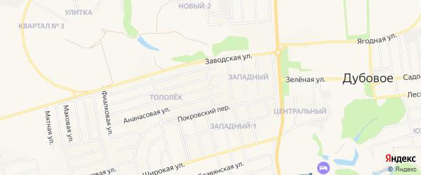 СТ Ромашка на карте поселка Дубового с номерами домов