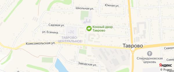 Садовый переулок на карте села Таврово с номерами домов