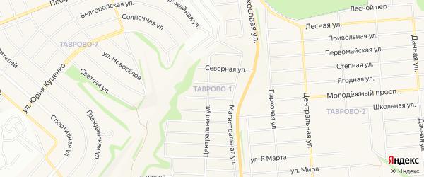 Карта Таврово 1-й микрорайона в Белгородской области с улицами и номерами домов