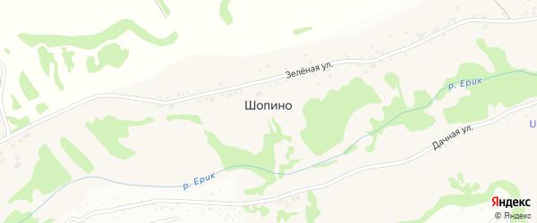 Луговая улица на карте села Шопино с номерами домов