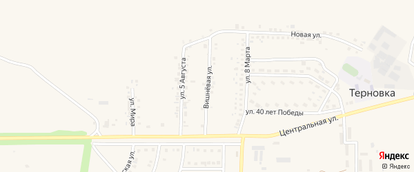 Вишневая улица на карте села Терновки с номерами домов