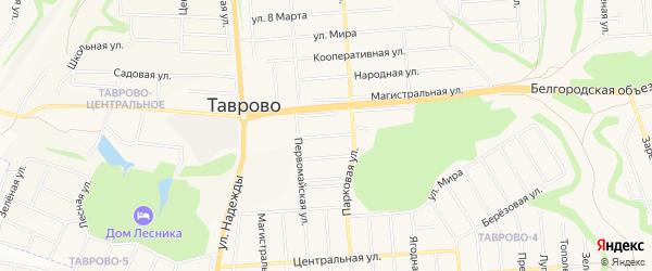 Карта Северного 1-й поселка в Белгородской области с улицами и номерами домов