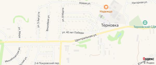 Улица 40 лет Победы на карте села Терновки с номерами домов