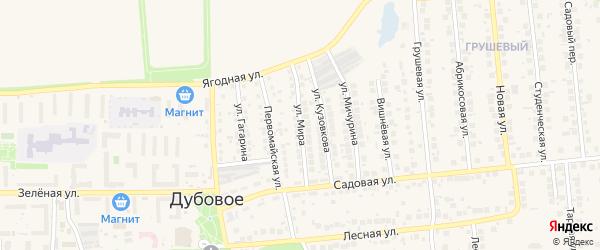 Улица Мира на карте поселка Дубового с номерами домов