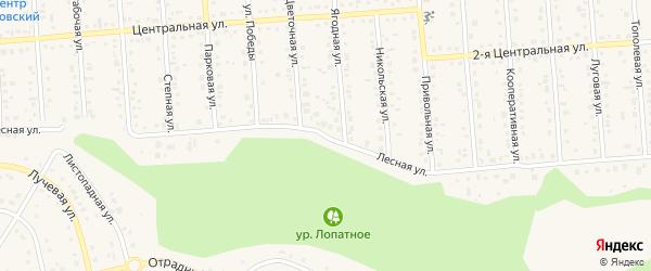Лесная улица на карте Таврово 4-й микрорайона с номерами домов