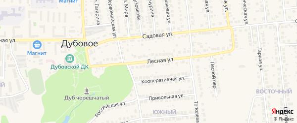 Лесная улица на карте поселка Дубового с номерами домов