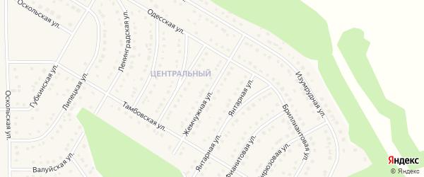 Жемчужная улица на карте Никольского села с номерами домов