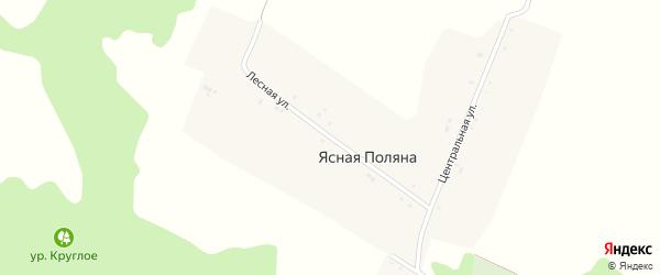 Лесная улица на карте хутора Ясная Поляна (Беленихинское с/п) с номерами домов