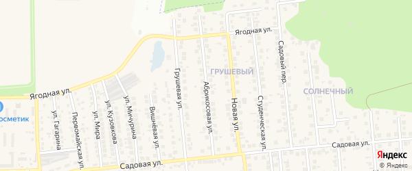 Абрикосовая улица на карте поселка Дубового с номерами домов