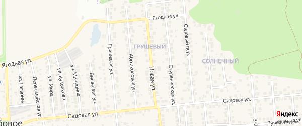 Новая улица на карте поселка Дубового с номерами домов