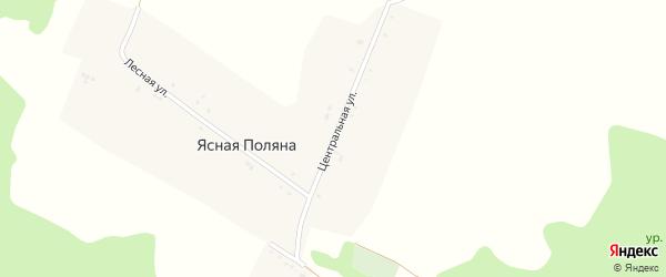 Центральная улица на карте хутора Ясная Поляна (Беленихинское с/п) с номерами домов