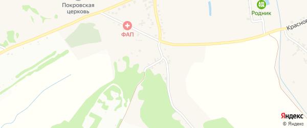 Лесной переулок на карте села Шопино с номерами домов