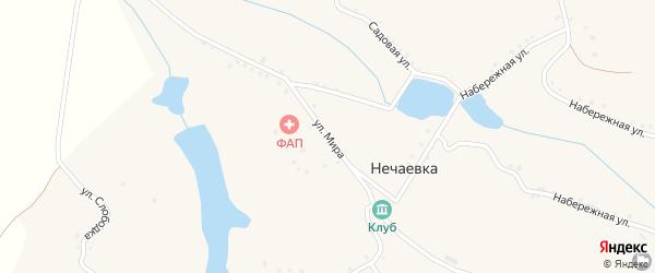 Улица Мира на карте села Нечаевки с номерами домов