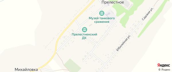 Улица Саши Николаева на карте Прелестного села с номерами домов