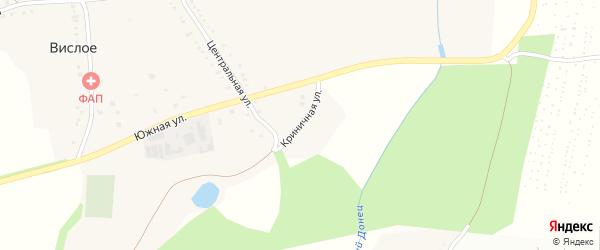 Криничная улица на карте Вислого села с номерами домов